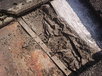 防水紙が劣化していて下地の木が剥き出しです