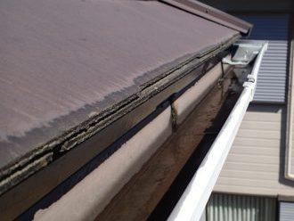 排水不良の横樋