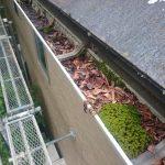 落ち葉が詰まって雨水が排水されません