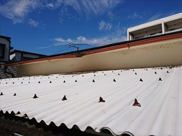 台風被害を受けた波板と雨樋