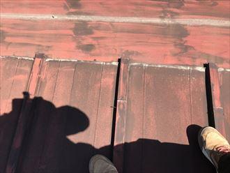 釘が抜けている瓦棒屋根