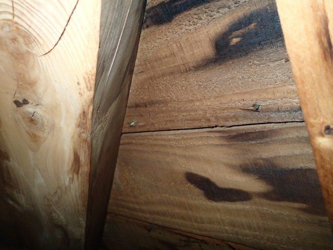 天井裏から確認できる雨漏り