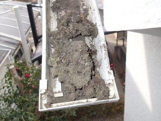 折れた雨樋に土が溜まっている