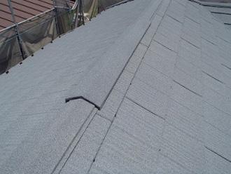 ジンカリウム鋼板の屋根材、エコグラーニ