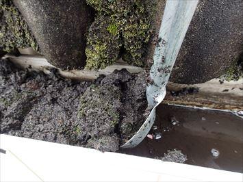 雨樋に溜まった土