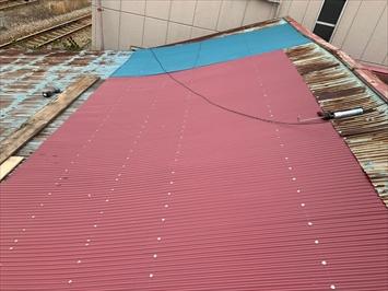 ガルバリウム鋼板の波板を張ります