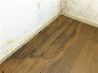 床にも雨漏りした痕跡がありました