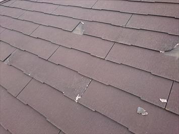 屋根には割れた欠片が乗っています