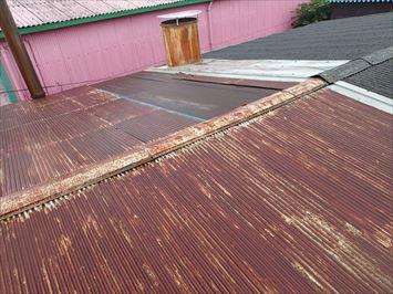 反対側の波板屋根