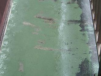 防水層が剥がれセメントがむき出しに