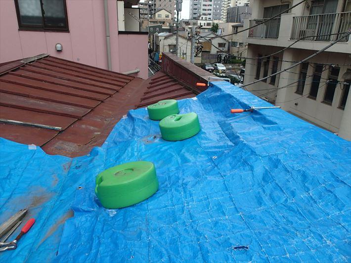 養生済みの屋根