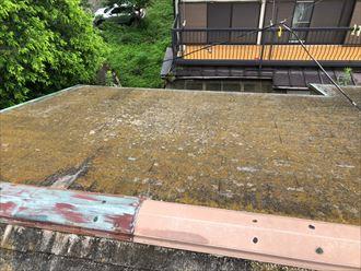 苔が覆ったスレート屋根