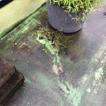 割れて草が生えたFRP防水