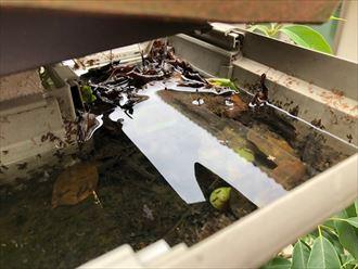 東大和市桜が丘で、落ち葉が詰まった雨樋には落ち葉除けネットをオススメします