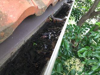 落ち葉が溜まった雨樋