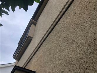 モルタルの外壁別アングル