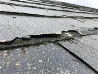 屋根材の表面が浮いています