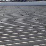 金属の折板屋根です