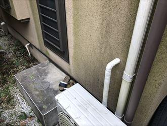 杉並区善福寺、外壁に苔が目立つようになってきたら塗装時期のサインです