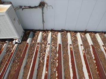 足立区舎人の工場の雨漏りは箱谷の詰まりが原因の可能性があります