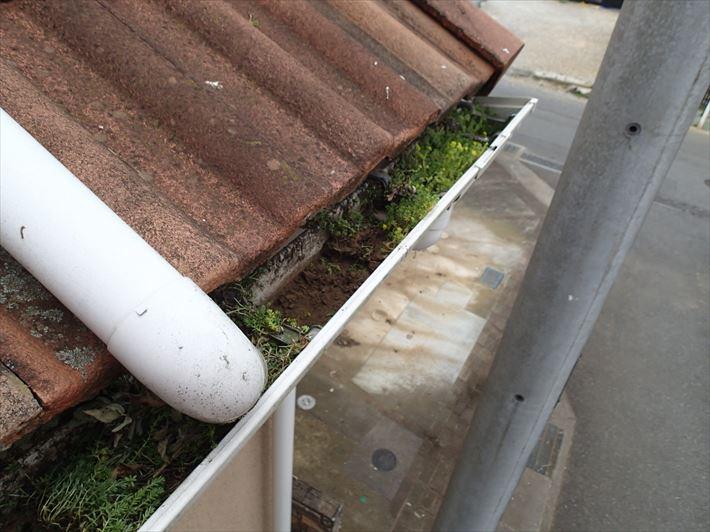 江戸川区北篠崎で台風シーズンに備えて雨樋の掃除を行いました