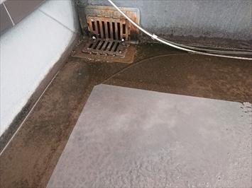 排水口の回りには雨水が溜まっています