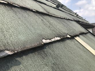 小平市小川町でパミールの屋根を調査しました