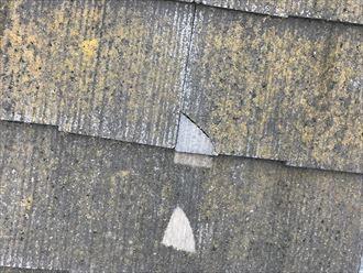 割れた屋根を戻すとその部分が変色していました