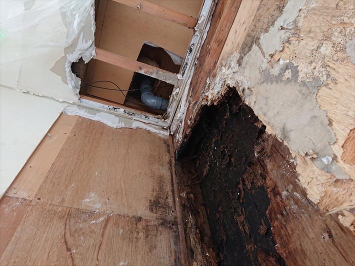 天井裏から排水管を見ると回りの木が腐っています
