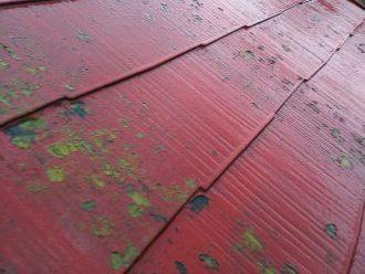 塗膜が剥げた屋根