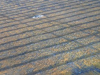 スレート屋根の状態点検