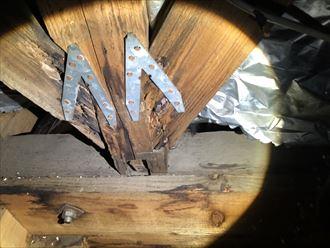 小屋裏で木材の腐食を発見
