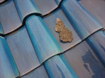 屋根の上に漆喰の欠片が落ちています