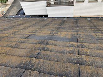 1枚の屋根材が剥がれ落ちた