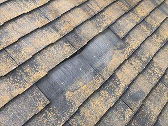 町田市金井町でスレートが1枚剥がれた屋根を調査しました
