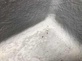 FRP防水の劣化寄り