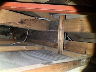 小屋裏の状態