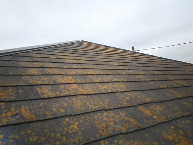 品川区旗の台で屋根カバー工事のお見積り、スレート屋根のメンテナンスポイントとは?