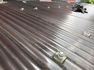 葛飾区小菅で波板屋根からの雨漏りの点検調査、雨樋の詰まりが原因でした