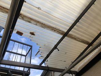 調布市深大寺北町で雹の被害に遭った波板を調査しました