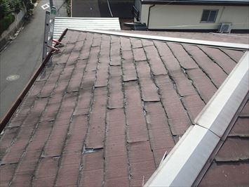 大屋根の様子