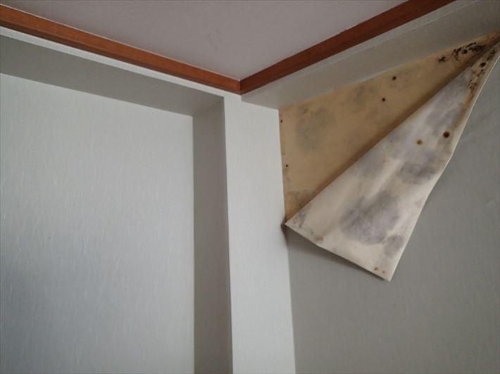 室内の雨漏りからのクロス剥がれ