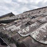 屋根のほとんどで塗膜の剥がれが発生しています