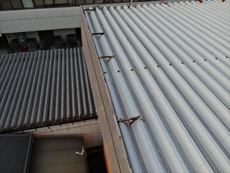 品川区勝島で折板屋根の点検、風で捲れ上がった箇所がありました