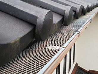 お家の雨樋には落ち葉除けネットが取り付けられています