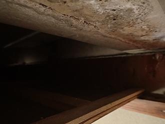 天井裏には雨水が浸入した形跡があります