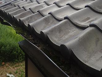 苔で詰まった雨樋