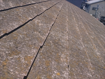 苔がついた屋根