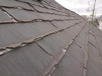 屋根全体で剥離の現象が起きていました