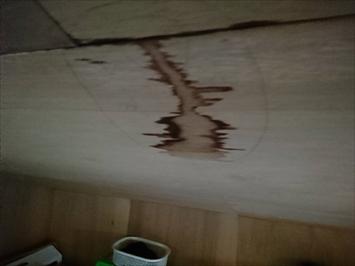天井裏のお部屋から雨漏りしておりました
